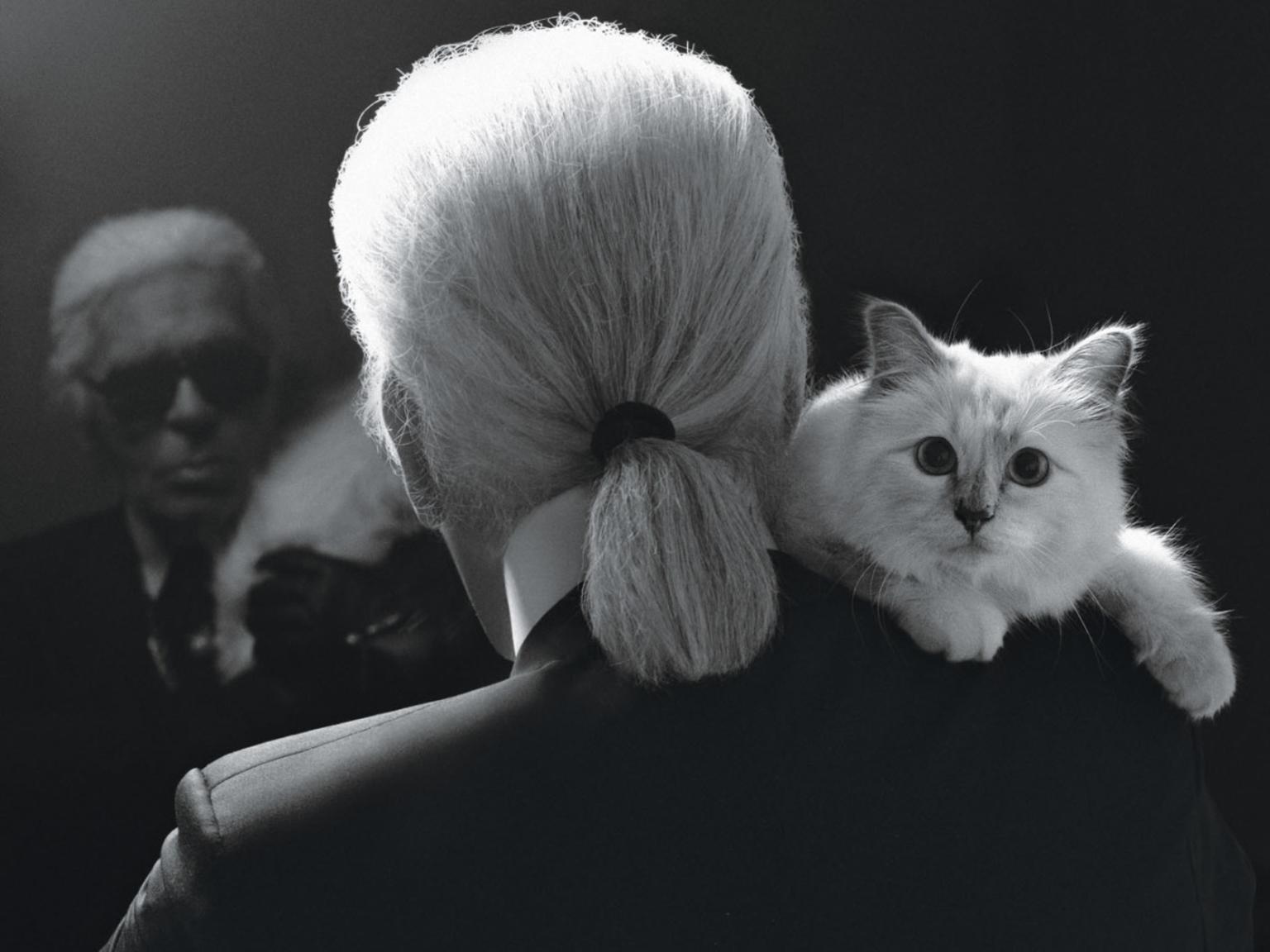 "choup - ""Il vero lusso? L'intelligenza"" - ricordando Karl Lagerfeld"